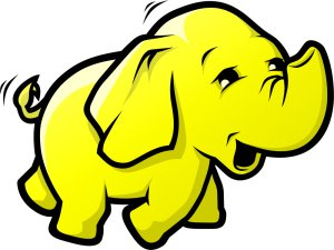 Integrating NoSQL Databases with Hadoop