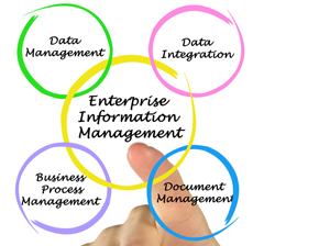 Enterprise Information Management (EIM)